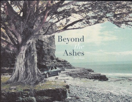 2014 (6) Ashes Book Cover