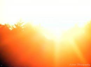 Blazing Light of Divine Love
