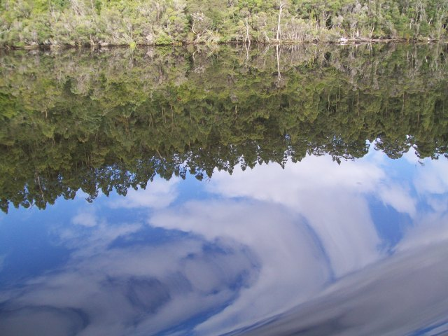 F185 Reflections in the Gordon river.