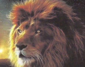 Lion image of Lion of Judah - Copy