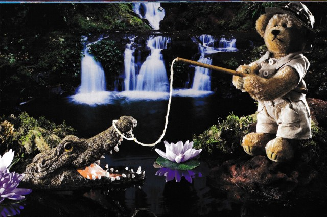 Bear creativity (2).jpg
