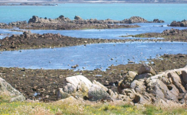 145 rocks off Lihou Island (2)