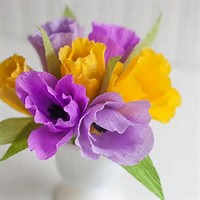 th2VWYA3GTCOLOURED FLOWERS