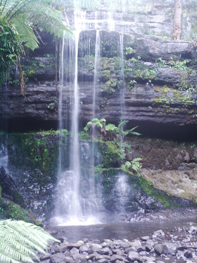 335 Russell Falls, 12 April 2013