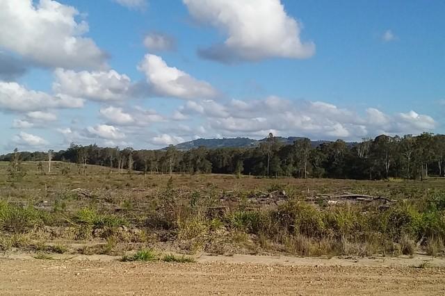5 Mt Wolvi from Hundreds Road, 28 July 2019